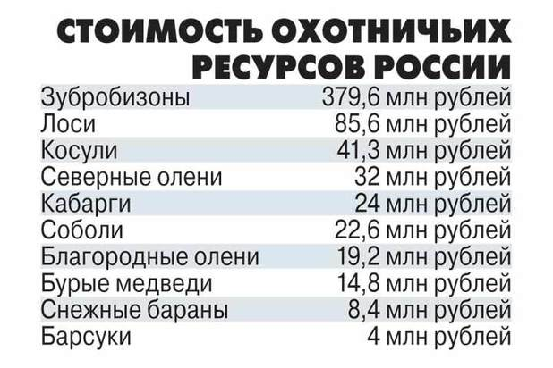 3cddb352fa8fcc7d4254177864017b02.lq - Природное богатство России оценили в 6 трлн рублей
