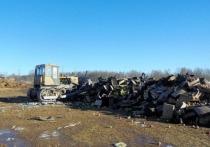 В Смоленской области уничтожили около 27 тонн подозрительных фруктов