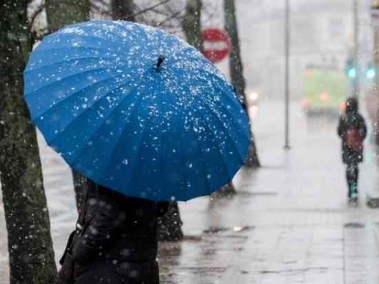 Синоптики обещают в Тверской области до +8 тепла и снег