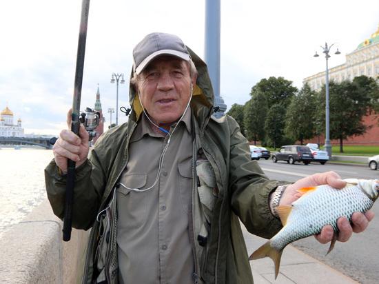 Россиян предупредили о дефиците рыбы