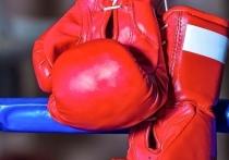 Мордовским боксерам не хватило удачи в Анапе