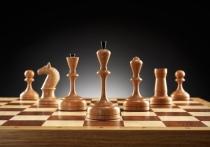 Педагогов Тульской области обучили методикам преподавания шахмат в школах