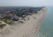 Поклонская пообещала разобраться со строительством креветочной фермы в Крыму