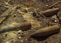 В Калининградской области обезвредили восемь артиллерийских снарядов