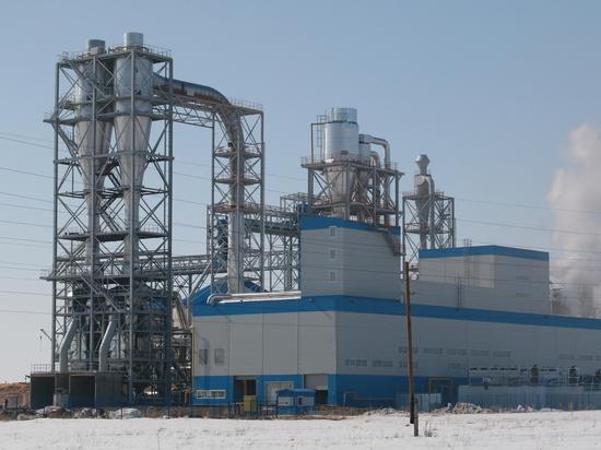 Павловский ДОК вырабатывает энергию и производит продукцию из щепы, коры, опилок и низкосортной древесины