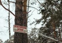Повторных слушаний по строительству тубдиспансера в Иркутске не будет?