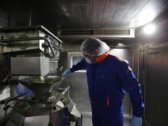106,3% составит производительность труда в Волгограде через 5 лет
