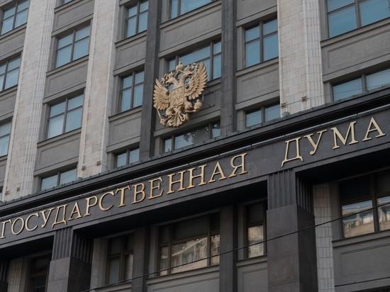 В Госдуму внесен проект заявления о непризнании итогов украинских выборов