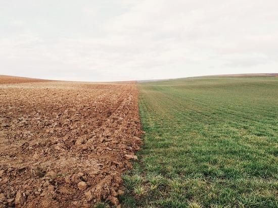НИИ в Забайкалье вынужден платить штрафы за пустующие более 9 лет поля