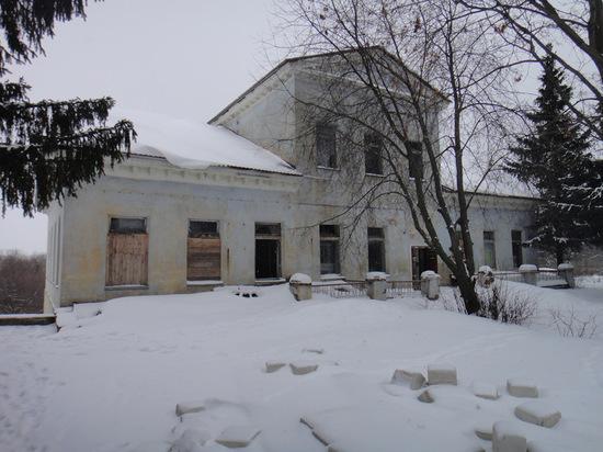 В Воронеже рассказали о проблемах охраны памятников