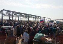 Аксенов пообещал разобраться с креветочной фермой в западном Крыму