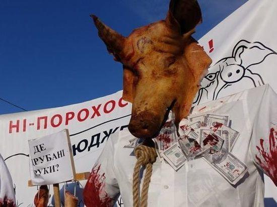 Порошенко встретили в Виннице отрезанными головами свиней