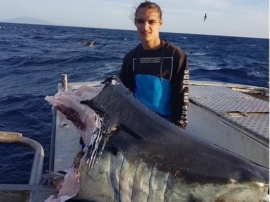 Рыбак выловил 100-килограммовую голову мертвой акулы