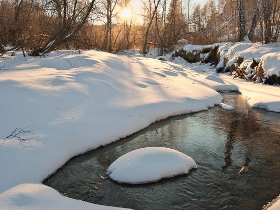 Потепление не привело к росту уровня воды в тульских реках