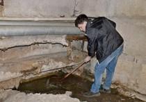 Ужасы нашего городка: многоквартирный дом в Калининграде десятилетиями точит вода в подвале