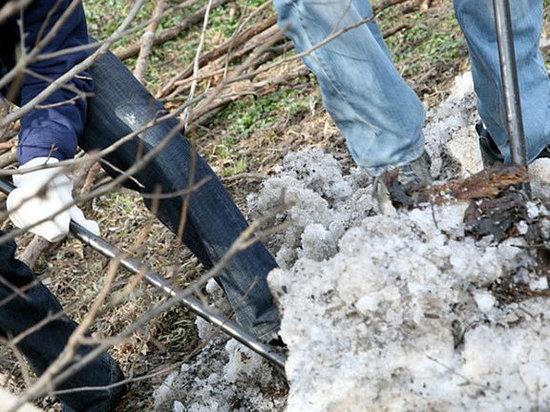 Жителей Саранска призвали оказать посильную помощь в уборке города