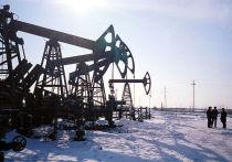 Покорение Арктики: «Роснефть» создает новый сверхкластер по добыче нефти