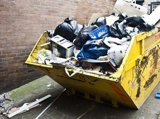 Цена мусора: сколько платить и как не переплатить