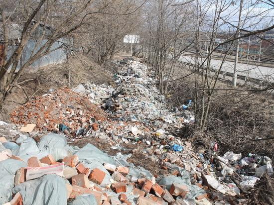 Смоляне жалуются на незаконную свалку и проблемы с вывозом мусора