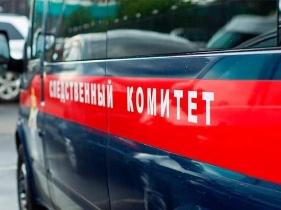 В Саранске избили школьницу: Следком проводит проверку