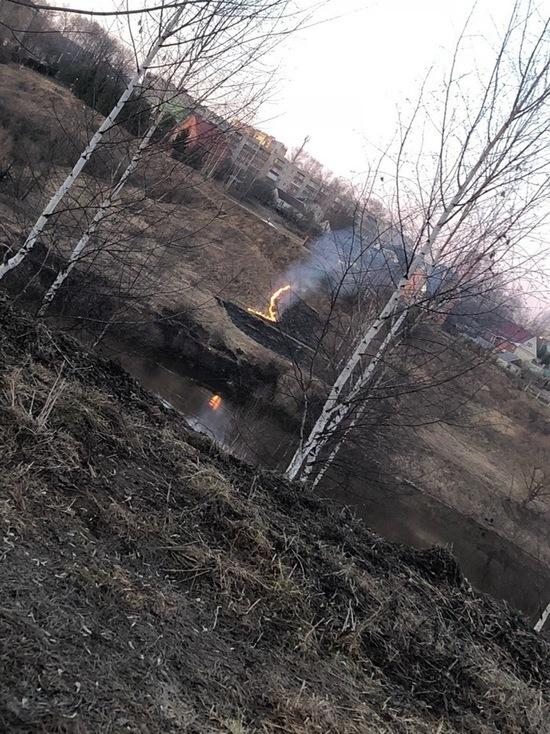 В Тверской области начали жечь сухую траву