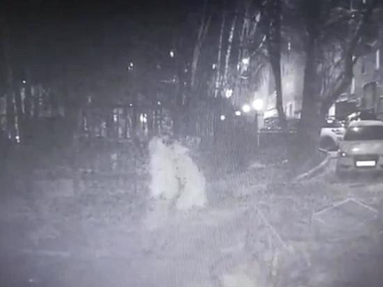 Киллер жестоко зарезал 57-летнюю женщину на Кутузовском проспекте