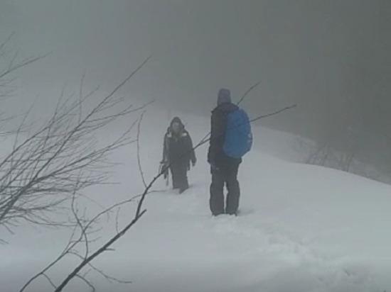 Спасатели отыскали в горах Сочи потерявшуюся сноубордистку