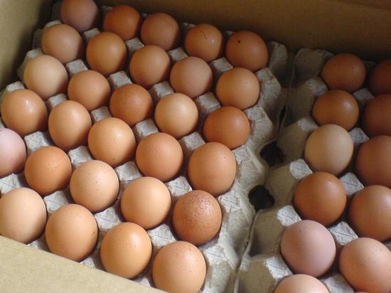 В Саранске появятся дополнительные места продажи яиц