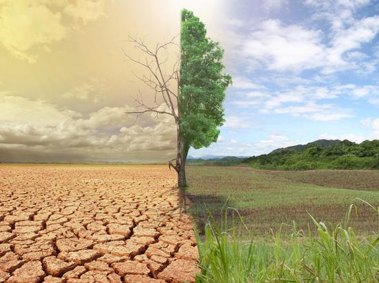 Изменение климата Земли: возможные последствия