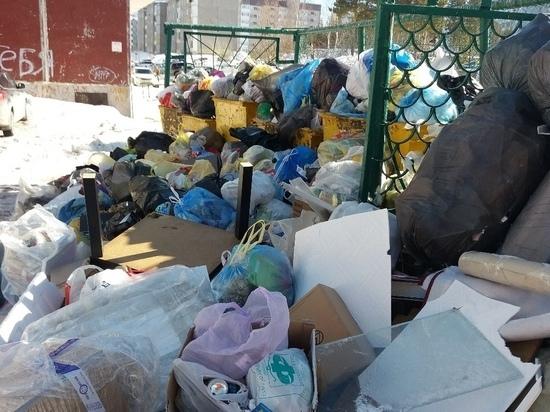 Горы мусора выросли на одной из улиц Ноябрьска. Фото