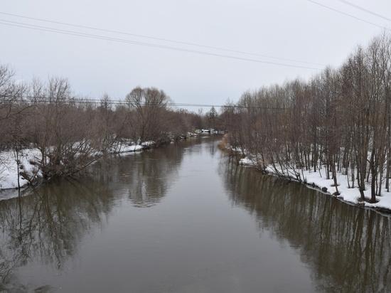На полметра за сутки вырос уровень реки Сельдь в Ульяновске