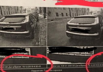 Воронежские власти оспорят отмену штрафа за неоплату парковки