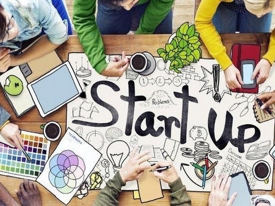 Чем хотят заниматься хабаровские стартаперы