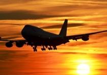 Самолет Москва-Красноярск столкнулся с птицами