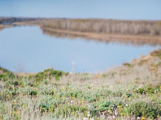 В Астраханской области хотят расчищать русла водоёмов
