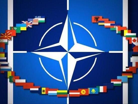 """Генсек НАТО в конгрессе США: """"никакая цена за мир не чрезмерна"""""""