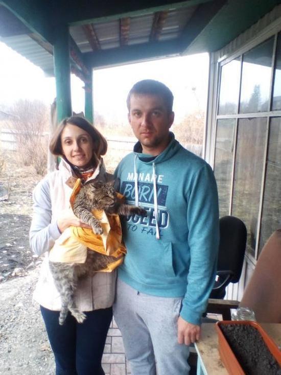 «Он провел две минуты в ледяной воде»: подробности спасения кота на алтайской турбазе