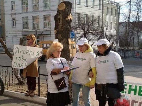 Активисты потребовали отставки руководителя и главного архитектора Читы