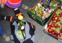 К 2050 году мир может столкнуться с нехваткой овощей, фруктов и хлеба