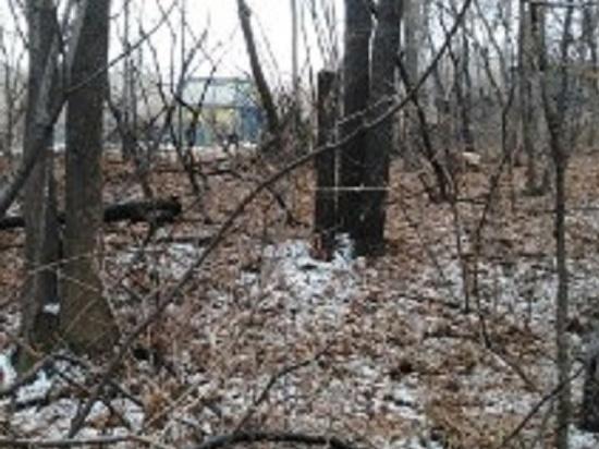 Пропавшего в Хабаровске студента нашли мертвым