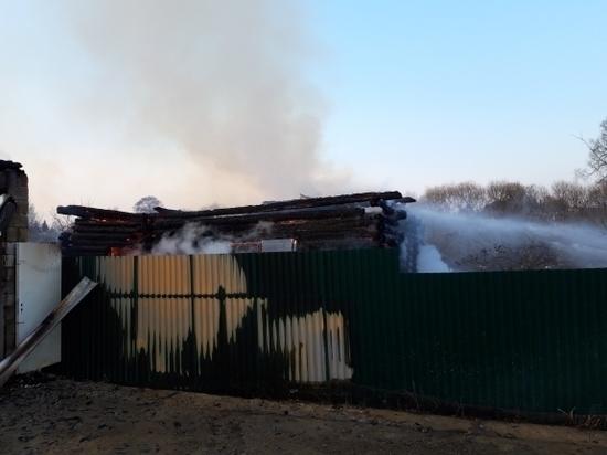 Пожилой мужчина погиб во время пожара двух домов в Медыни