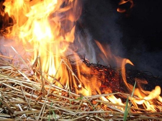 В Мордовии сгорело 40 тонн сена