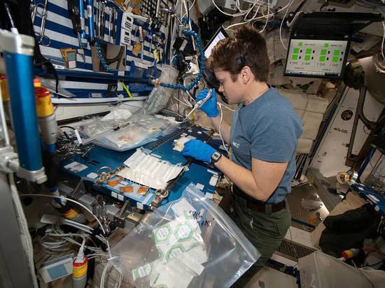 На американском сегменте МКС пересчитали патогенные микробы