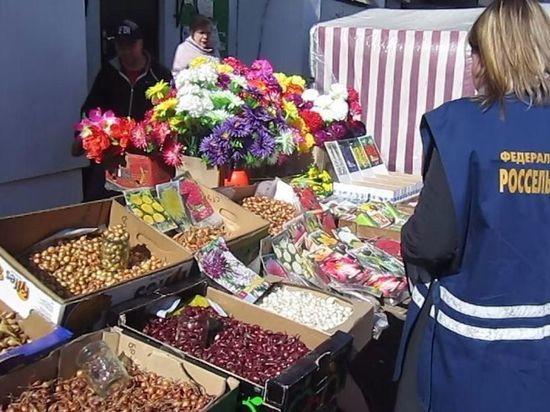 В Иваново на улицах торгуют небезопасными семенами и луком-севком