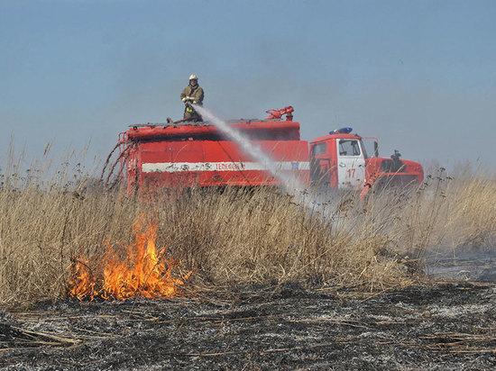 За сутки пожарные Мордовии выезжали на тушение сухой травы 19 раз