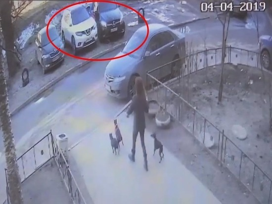В Петербурге водитель наехал на ребенка из-за места на газоне