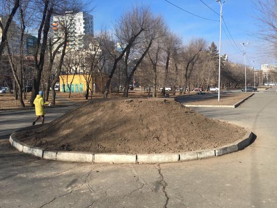 Объемная цветочная клумба появится в Хабаровске