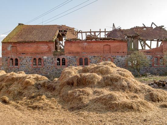 Конезавод Zvion в Доваторовке: галопом к разрушению