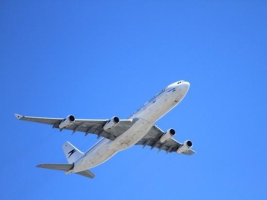 Самолёт не смог приземлиться в аэропорту «Петрозаводск» из-за выбежавшей собаки
