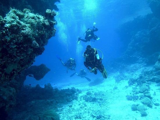 В Турции нашли заполненный слитками корабль, которому 3600 лет